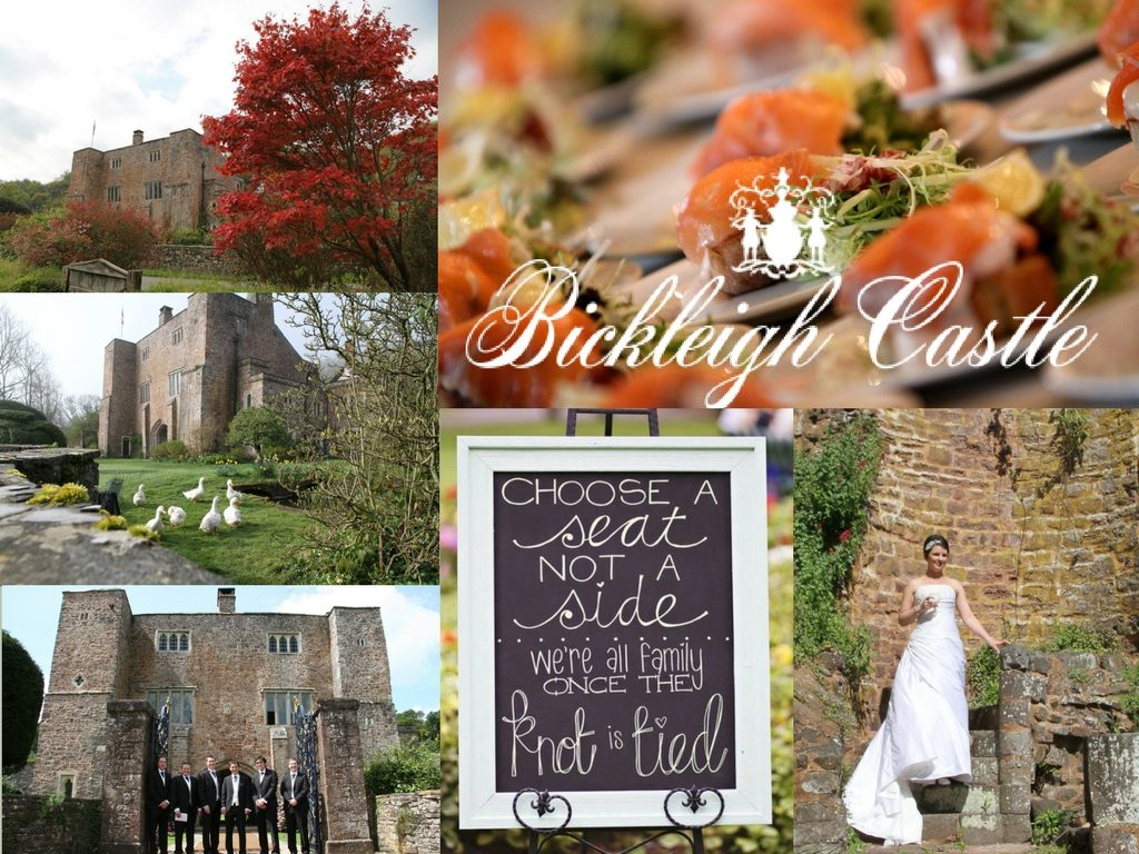 Wedding theme ideas 2017 bickleigh castle have it covered wedding theme ideas 2017 junglespirit Images